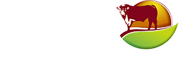 Bife de perú - Carnes Sá da Bandeira